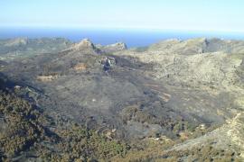 El PSIB pedirá en el Senado la declaración  de zona catastrófica para la Serra de Tramuntana
