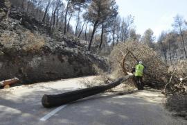 La carretera entre Andratx y Estellencs será reabierta a finales de esta semana