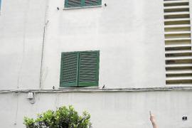 Evoluciona de forma favorable la niña que cayó desde un tercer piso en Palma