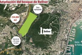 Cort incorporará 250.000 metros cuadrados al bosque de Bellver