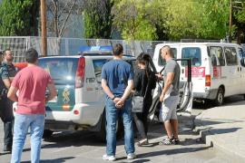 Una floristería de Calvià ocultaba un búnker con más de 400 plantas de marihuana