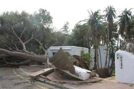 Santanyí estudia solicitar la declaración de zona catastrófica tras el temporal