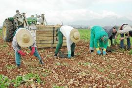 El Govern regula el uso de abono en zonas agrarias con riesgo de contaminación