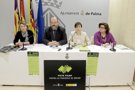 Hasta 215 víctimas de la violencia fueron protegidas en 2012 en Palma