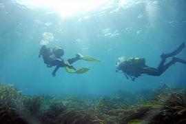 El submarinismo lucha por subsistir todo el año en Eivissa