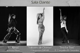 MicroDanza: un recorrido por distintas expresiones de la danza