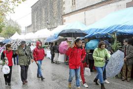 El municipio de Llubí exhibe su potencial en una Fira de la Mel deslucida por la lluvia