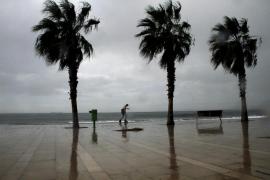 Alerta amarilla  por fenómenos costeros y viento de hasta 80 km/h