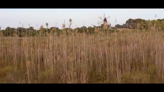 La Plataforma Salvem ses Fontanelles lanza  un vídeo denuncia: 'Balears és natura...venuda'