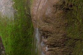 Fuente natural en Pollença