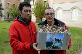 Entregadas 20.000 firmas para pedir la protección de las praderas de posidonia