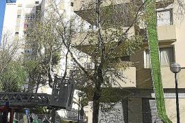 El temporal arranca 20 metros de barandilla de un edificio en el Coll d'en Rebassa