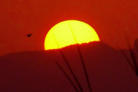 Puesta de sol en s'Albufera de Mallorca