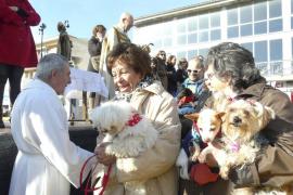 Sant Antoni bendice los últimos animales en la Part Forana