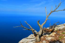 Costa Nord de Mallorca