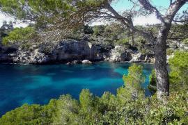Cala Pi, calas de Mallorca