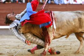 Julio Aparicio, muy grave tras una escalofriante cogida en Las Ventas