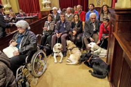 El Parlament balear aprueba que los perros guías puedan acceder a cualquier espacio público