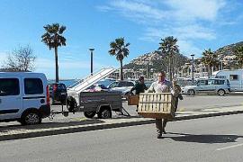 Los cisnes del Port regresan a su hogar