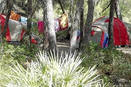 Los expedientes sancionadores en parques naturales aumentan un 330%