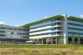 La Reial Acadèmia de Medicina aboga por implantar la carrera en la UIB