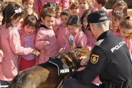 Los más pequeños descubren el día a día de la Policía Nacional