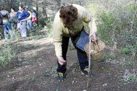 Los dueños de fincas rústicas podrán cobrar por recoger setas, caracoles y espárragos