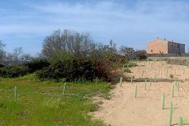 Ses Covetes, un año sin el cemento de los 68 apartamentos ilegales