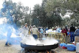 El Govern dará permiso para encender fuego en los Pancaritats
