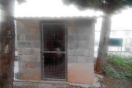 Denuncian deficiencias graves en las celdas de los menores de Es Pinaret
