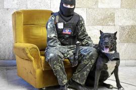 El Gobierno de Ucrania admite que «no controla» dos regiones del este
