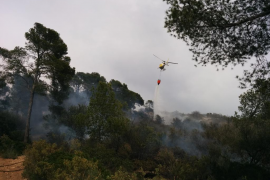 Controlado un incendio forestal en Camp de Mar
