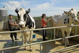 Balears pide 22 millones más para el Plan de Desarrollo Rural en 2014-2020