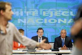 Rajoy resta importancia a la caída electoral pero anuncia un plan para dinamizar al PP
