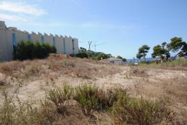 El Parlament insta al Govern a evitar la construcción sobre las dunas del Camp de Mar