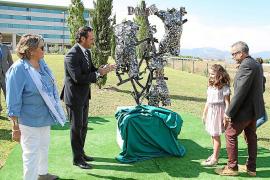 Los hospitales del IB-Salut consiguieron el año pasado 149 órganos para trasplantes