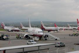 Un pájaro, culpable del aterrizaje de emergencia de un avión de Air Berlin