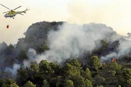 El primer gran fuego de la temporada golpea en Alcúdia