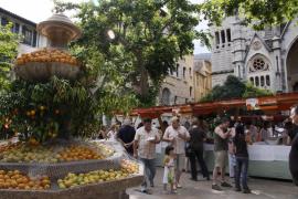 Jornadas 'de la taronja' en Sóller