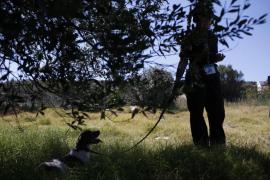 La policía concluye sin éxito la búsqueda en la zona donde desapareció Madeleine