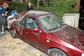 La caída de una rama de un árbol centenario destroza un coche en Palma