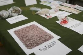 Sanidad alerta que Ibiza es el laboratorio europeo de prueba de nuevas drogas