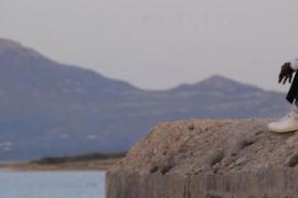 'Muerte accidental de un inmigrante. El caso de Alpha Pam' en Alaró