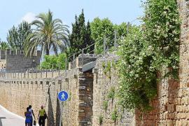 Un estudio científico descarta que las murallas de Alcúdia se encuentren en peligro inminente