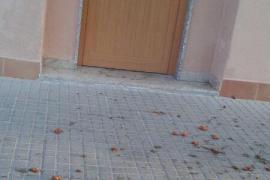 Aspecto de una acera de la calle Francesc Femenias