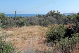 El Consell aprueba que 10 hectáreas en la Costa d'en Blanes pasen de rústico a urbanizable