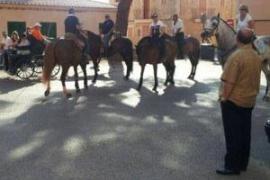 Excrementos de caballo