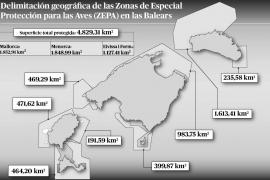 Madrid protege casi cinco mil kilómetros del mar balear para las aves marinas