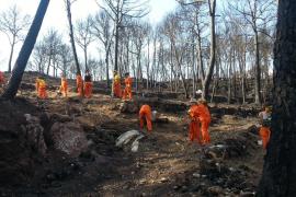 El Govern ya ha actuado sobre 270 hectáreas del incendio de Andratx