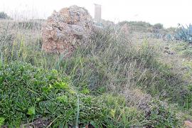 Artà pedirá a Costas no ampliar la protección del Molí d'en Regalat
